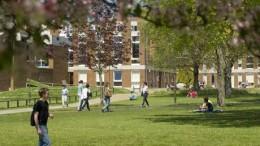 University-of-Sussex1